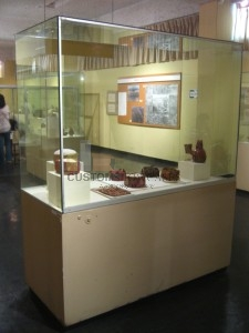 Museum Display Cabinet